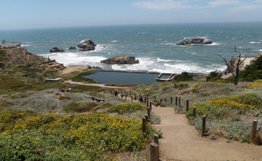 Land's End/GGNRA Trail Revitalization