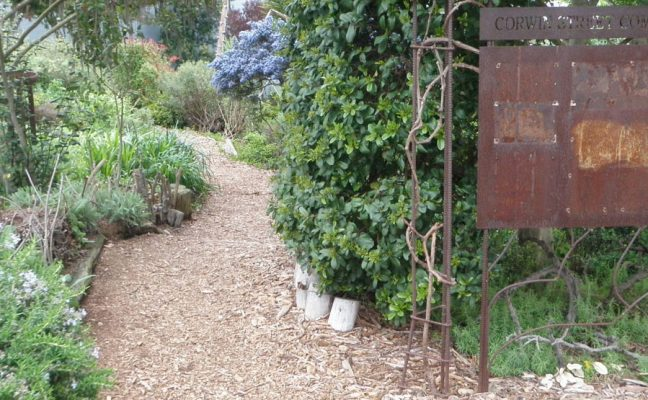 Corwin Street Community Garden