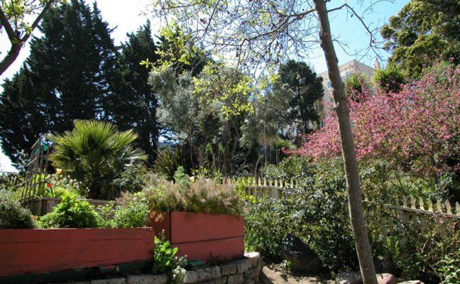 Daniel E. Koshland Park and Community Garden