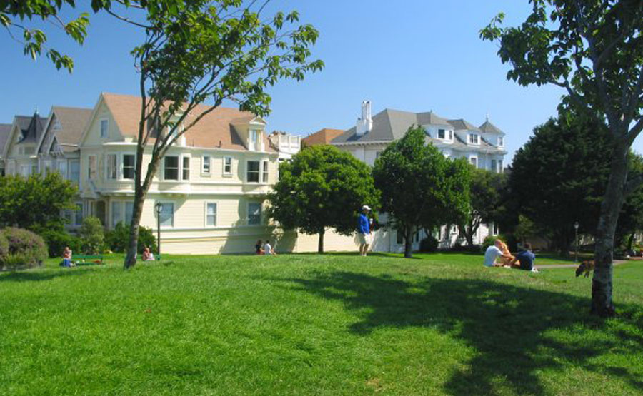 Friends of Duboce Park and Duboce Triangle