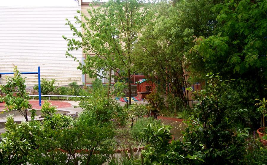 Los Americas Child Development Center School Garden